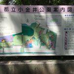 8月21日(日)は小金井公園へ行って来ました(^O^)