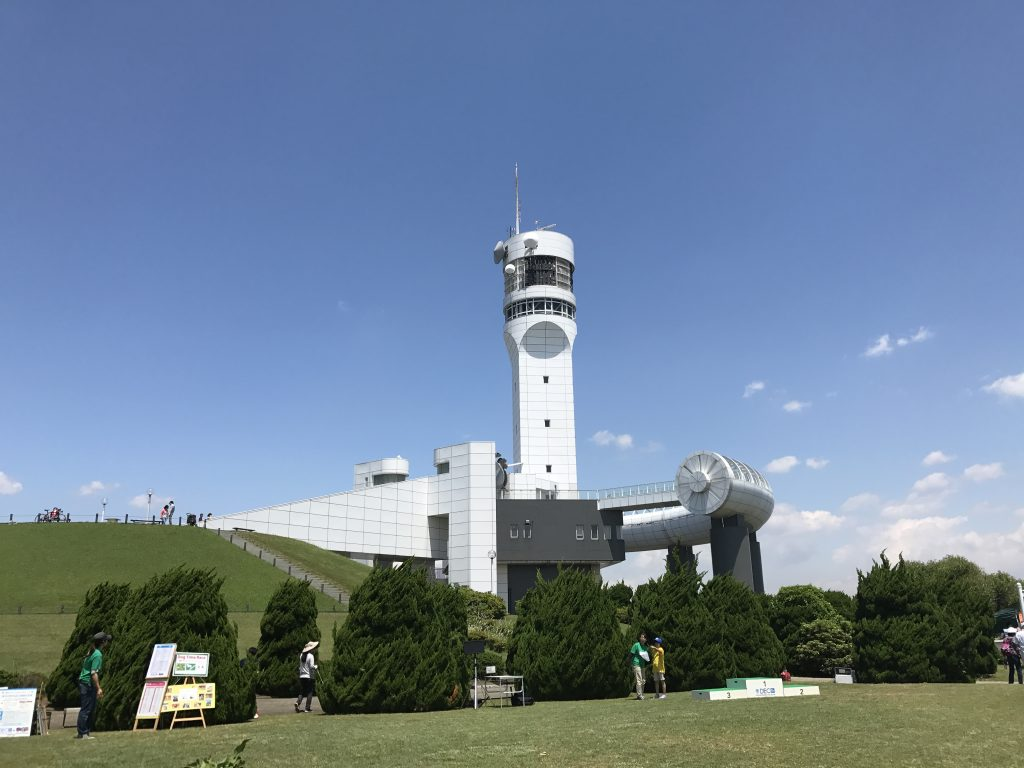 黒豆柴犬 うめ太 1歳4ヶ月 新浜港シンボルタワー