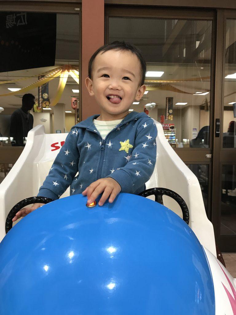 黒豆柴犬 うめ太 1歳4ヶ月 東北自動車 赤ちゃん