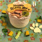 1月23日、うめ太は2歳になりましたぁ(≧▽≦)
