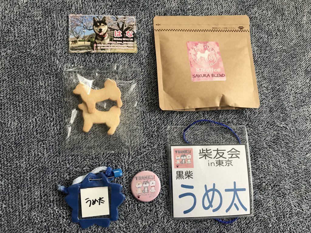 黒豆柴犬 うめ太 2歳1ヶ月 柴友会in東京 わんダフルネイチャービレッジ